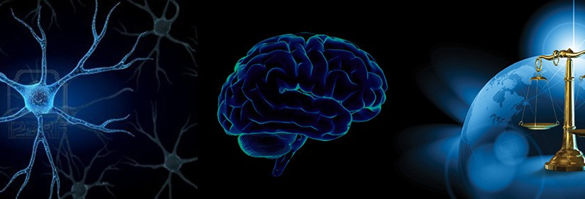 Using Neuroscience to Understand the Criminal Mind